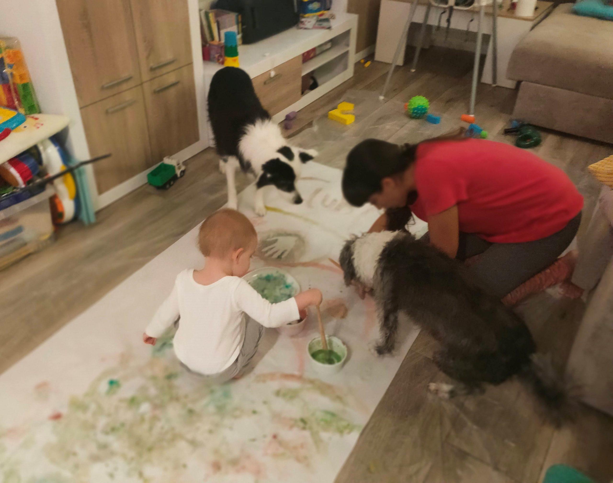 actividades perros y niños primera vez juntos