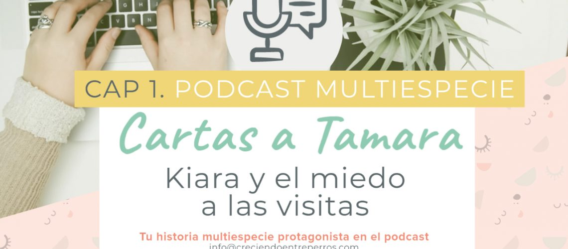 Podcast cap 1 cartas a tamara youtube