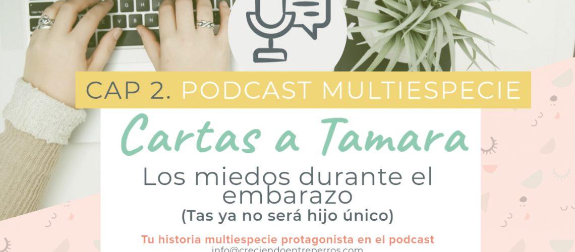 Podcast cap 2 cartas a tamara youtube