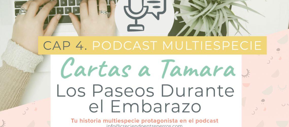 Podcast cap 4 cartas a tamara youtube