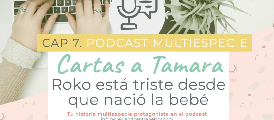 Podcast cap 6 cartas a tamara youtube (1)