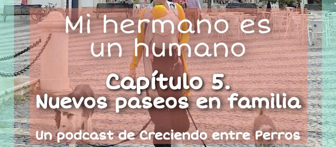 capitulo 5 mi hermano es un humano porteo con perros los nuevos paseos en familia tamara hernan creciendo entre perros (1)