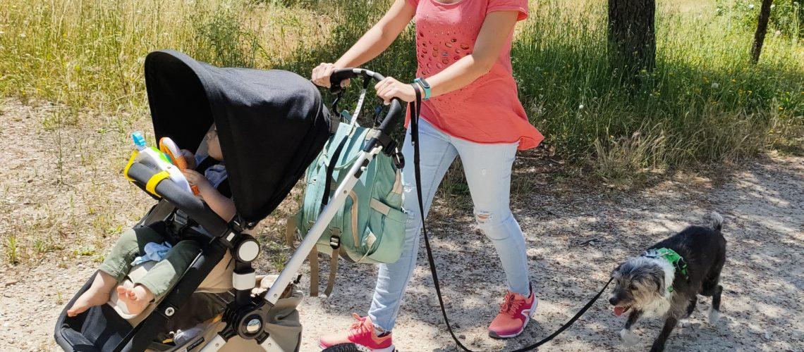 Paseando con carro de bebé y perros