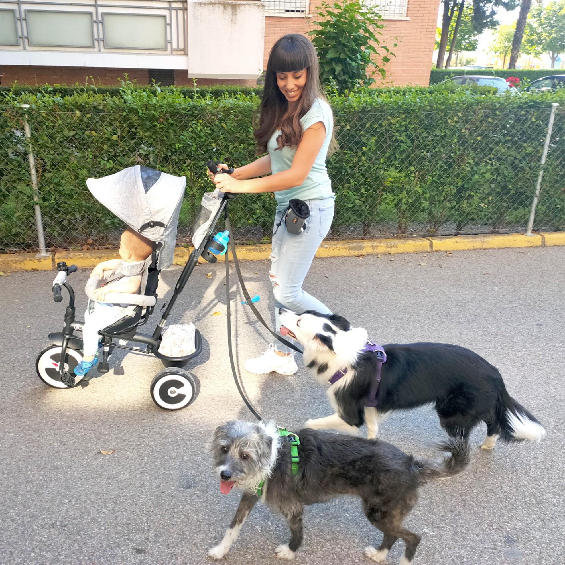 paseando con triciclo bebé y perros