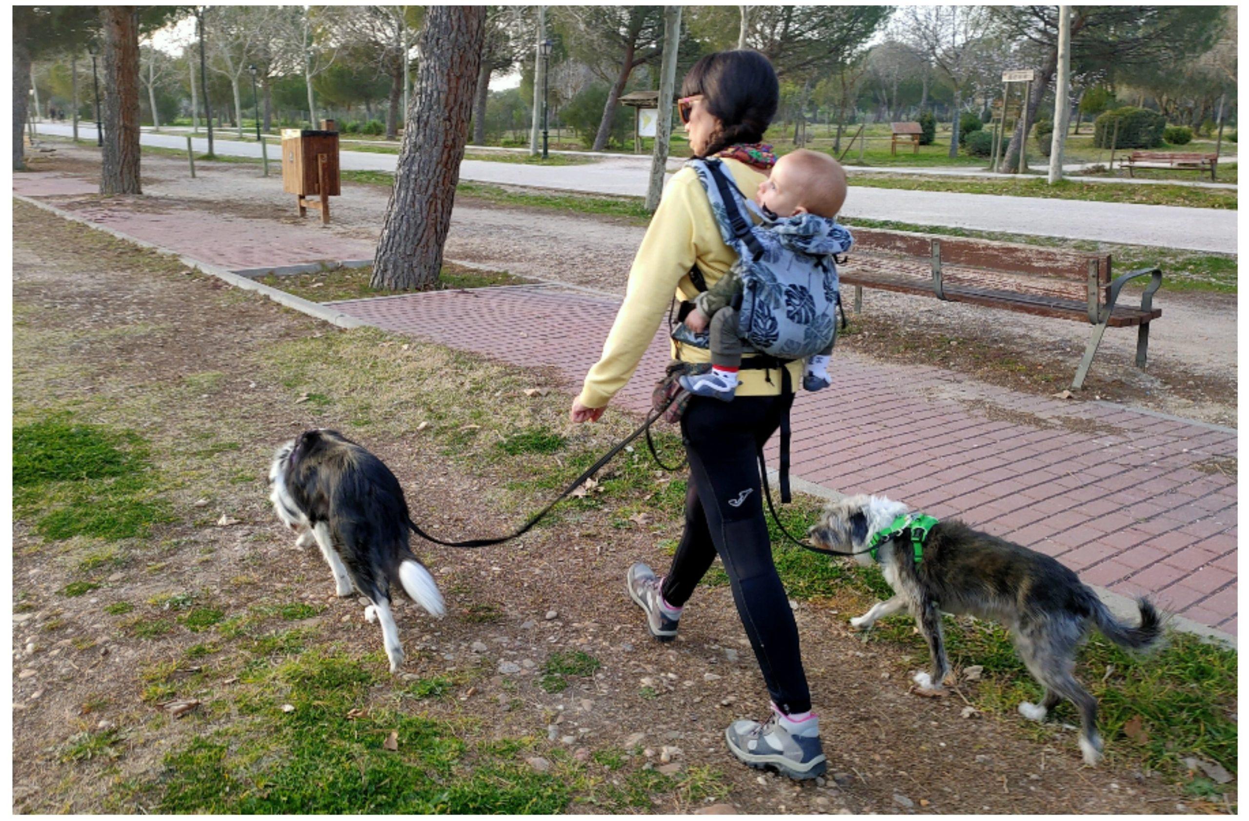 Mama multiespecie paseando con perros y bebé porteado